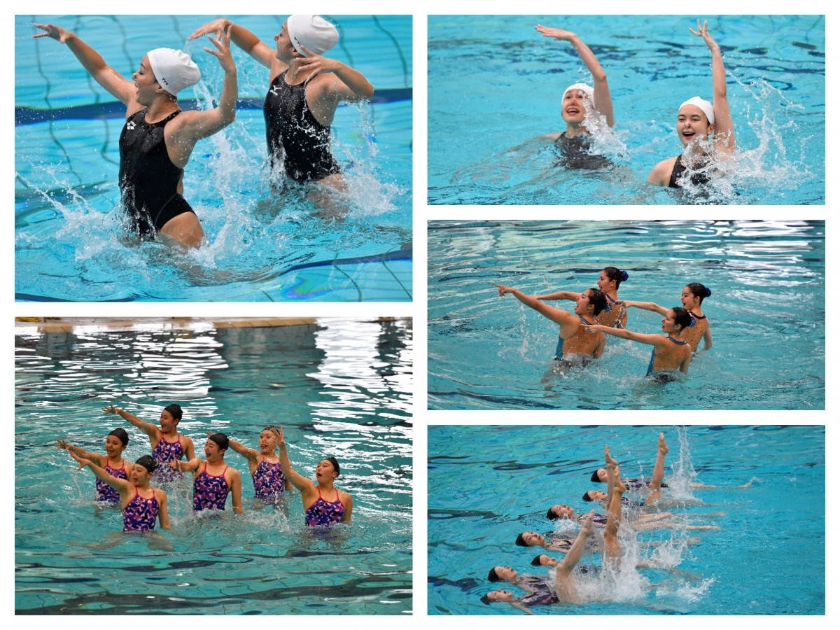 collage syncro